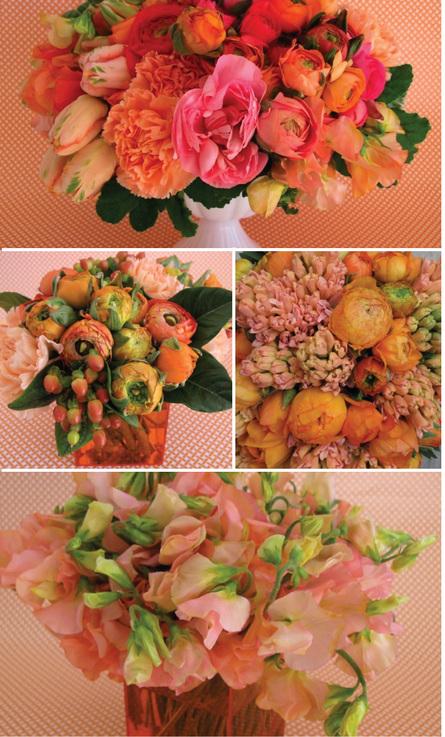 Rosenow_floral_orange